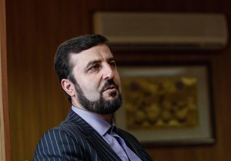 غریب آبادی: 20 درصد از کل بازرسی های آژانس در ایران انجام می گردد