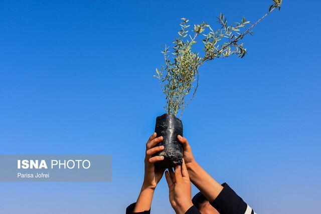 نهضت سبز در بوشهر - تصاویر